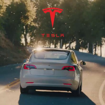 Tesla Inc. - Daily - Elliott Wave Forecast - by WaveTrack International